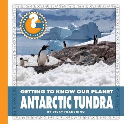Antarctic Tundra by Vicky Franchino