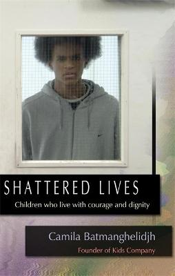 Shattered Lives by Camila Batmanghelidjh