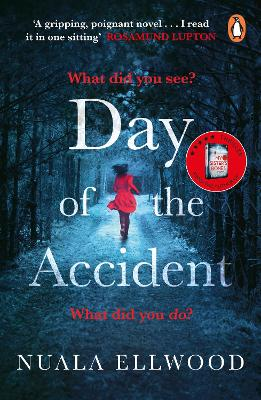 Day of the Accident book