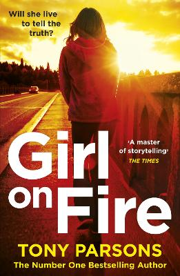 Girl On Fire: (DC Max Wolfe) book