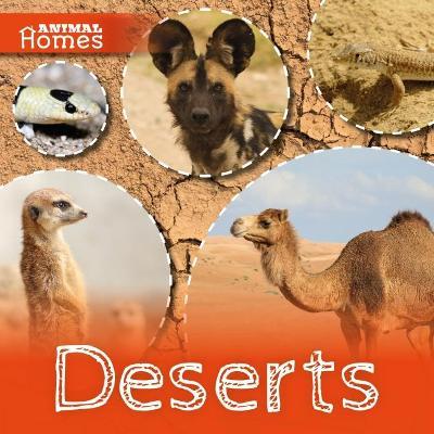 Deserts by John Wood