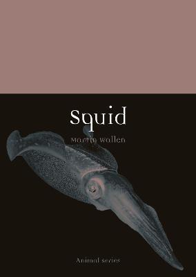 Squid by Martin Wallen