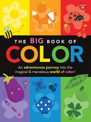 The Big Book of Color by Lisa Martin