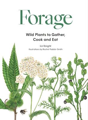 Forage: Wild plants to gather and eat book