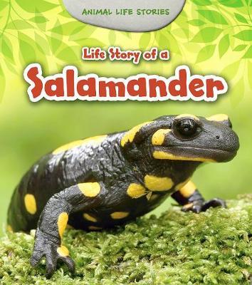 Life Story of a Salamander book