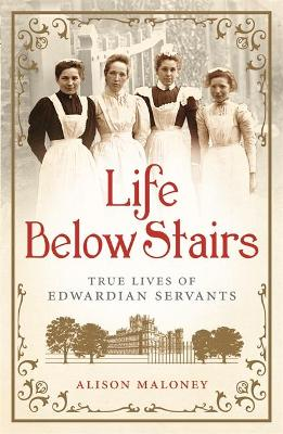 Life Below Stairs by Alison Maloney
