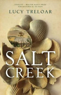 Salt Creek by Lucy Treloar