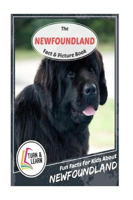 Newfoundland Fact and Picture Book by Gina McIntyre