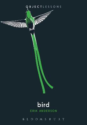Bird by Erik Anderson