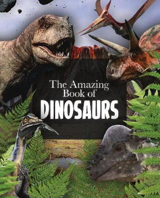 The Amazing Book of Dinosaurs by Clare Hibbert