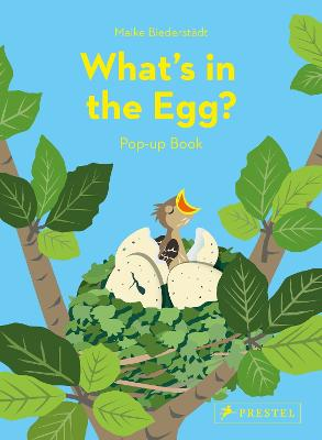 What's in the Egg?: Pop-Up Book book