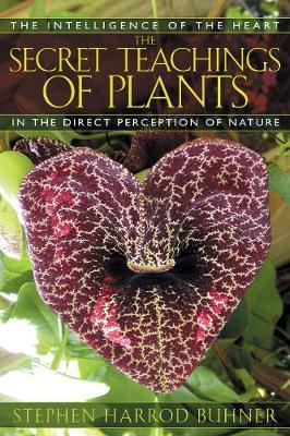 The Secret Teachings of Plants by Stephen Harrod Buhner