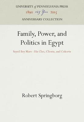Family, Power, and Politics in Egypt by Robert Springborg