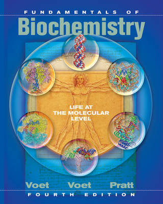 Fundamentals of Biochemistry Life at the Molecular Level + Wileyplus Registration Card by Donald Voet
