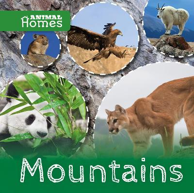 Mountains by Holly Duhig