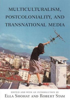 Multiculturalism, Postcoloniality, and Transnational Media book