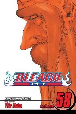 Bleach, Vol. 58 by Tite Kubo
