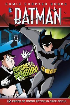 Batman by ,Scott Sonneborn