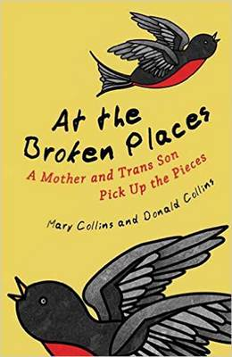 At the Broken Places by Donald Collins