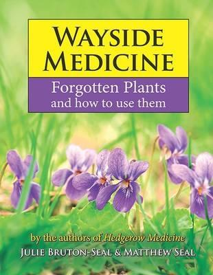 Wayside Medicine: Forgotten Plants to Make Your Own Herbal Remedies by Julie Bruton-Seal