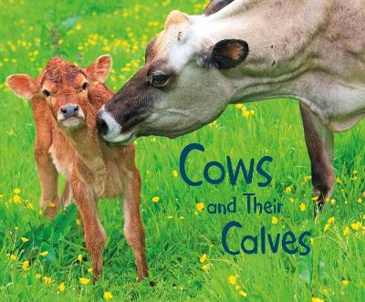 Cows and Their Calves: A 4D Book by Margaret Hall