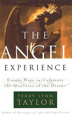 Angel Experience by Terry Lynn Taylor