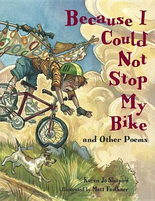 Because I Could Not Stop My Bike book