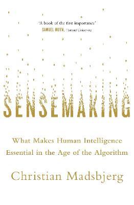 Sensemaking by Christian Madsbjerg