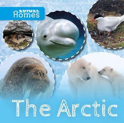 Arctic by John Wood
