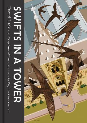 Swifts in a Tower by David Lack
