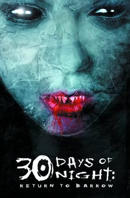 30 Days Of Night: Return To Barrow by Steve Niles