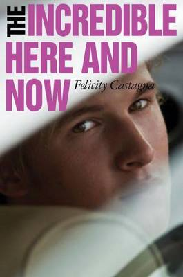 The Incredible Here and Now by Felicity Castagna