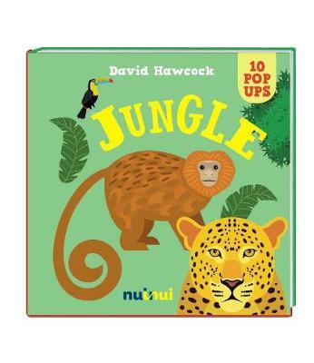 10 Pop Ups: Rain Forest book