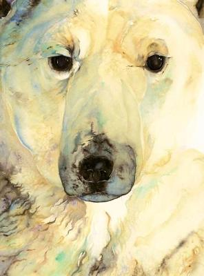 The Ice Bear: Author Edition by Jackie Morris