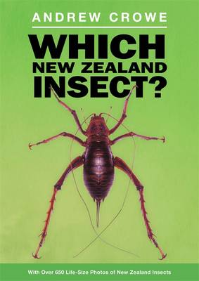Which New Zealand Insect? by Andrew Crowe