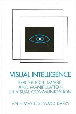 Visual Intelligence by Ann Barry