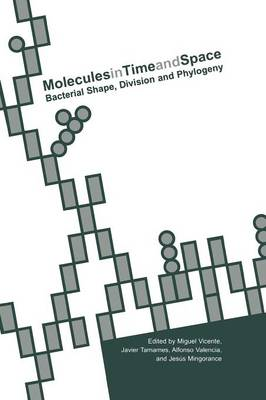 Molecules in Time and Space by Miguel Vicente