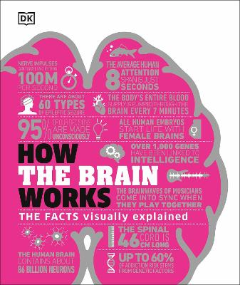 How the Brain Works: The Facts Visually Explained book