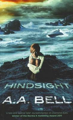 Hindsight book