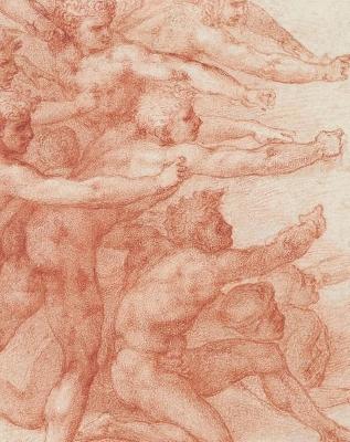Michelangelo - Divine Draftsman and Designer book