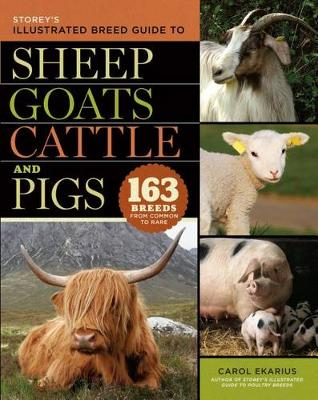 Storey's Illustrated Breed Guide to Sheep, Goats, Cattle and Pigs by Carol Ekarius