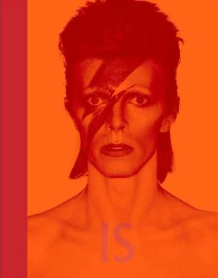 David Bowie is by Victoria Broackes