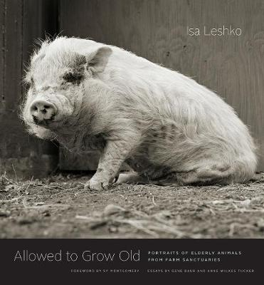 Allowed to Grow Old: Portraits of Elderly Animals from Farm Sanctuaries by Isa Leshko