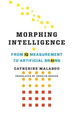 Morphing Intelligence: From IQ Measurement to Artificial Brains book