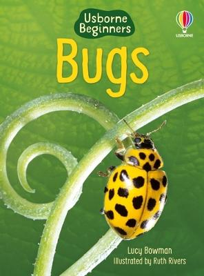 Bugs by Lucy Bowman