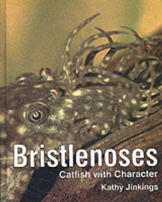 Bristlenoses by Kathy Jinkings