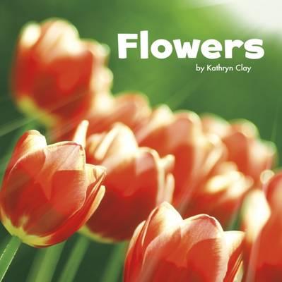 Flowers by Mira Vonne