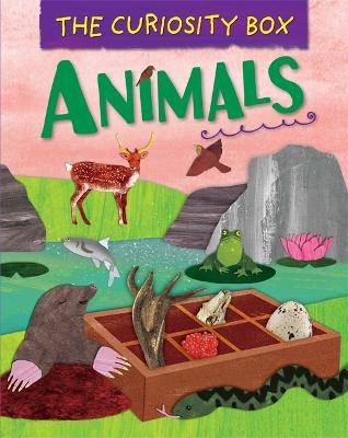 The Curiosity Box: Animals by Peter Riley