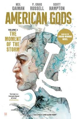 American Gods: The Moment of the Storm book