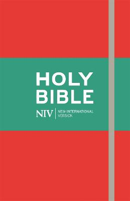 NIV Thinline Red Bible book